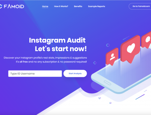 Why you Should use Instagram Profile Audit Tool? – [Famoid Analytics]