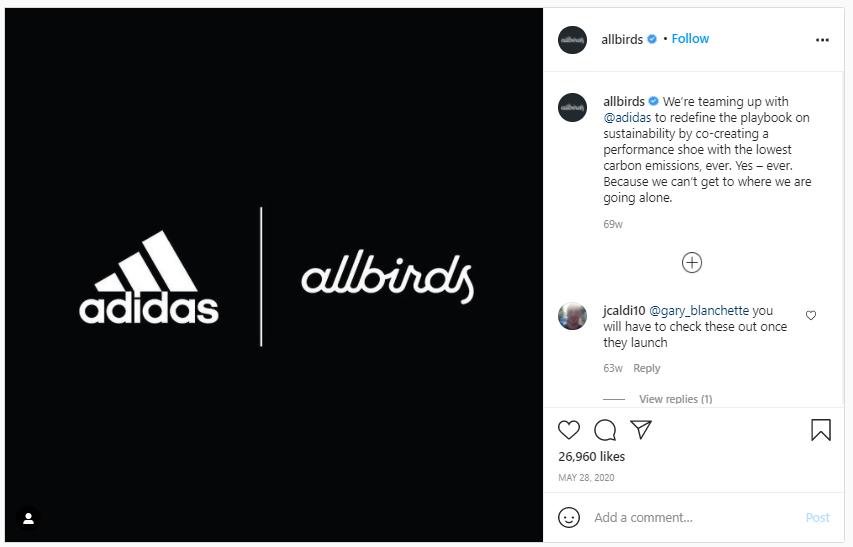 All birds instagram